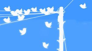 Twitter-lintuja langalla