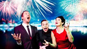 Vuosi vaihtuu 2014, yle tv1