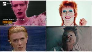 David Bowie -teemaillan kuvia.