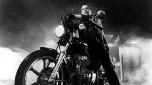 Taistelukala, ohjaus Francis Ford Coppola. Kuvassa Mickey Rourke.