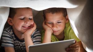 Kaksi poikaa katsoo tablettia