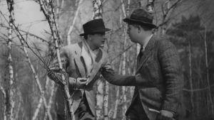 Pelin säännöt (1939), ohjaus Jean Renoir