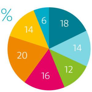 18 prosenttia Ylen sisältöjen ja palvelujen kuluista menee uutisiin, 14 urheiluun, 12 ajankohtaisohjelmiin, 16 asiaohjelmiin, 20 kulttuuriin ja viihteeseen, 14 draamaan ja 6 lasten- ja nuortenohjelmiin