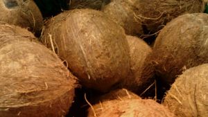 kookospähkinöitä