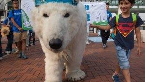 Isbjörn på klimatmarsch i Hong Kong