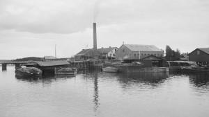 Borgå ångsåg på Ängsholmen utanför Hammars. Bilden är tagen 1909.