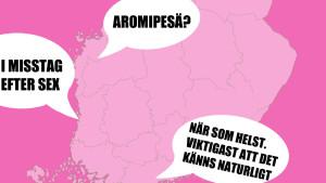 Photoshoppad karta, Finland.