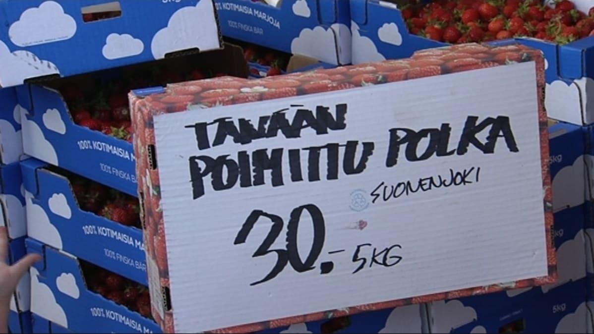 Mansikan Hinta Turku