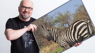 Audio: Unelmien luontomatkat