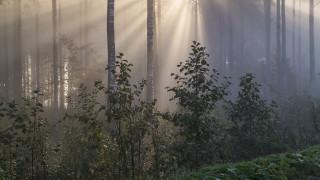 Audio: Oopperailta Suomen Kansallisoopperasta: Erkki Melartinin Aino