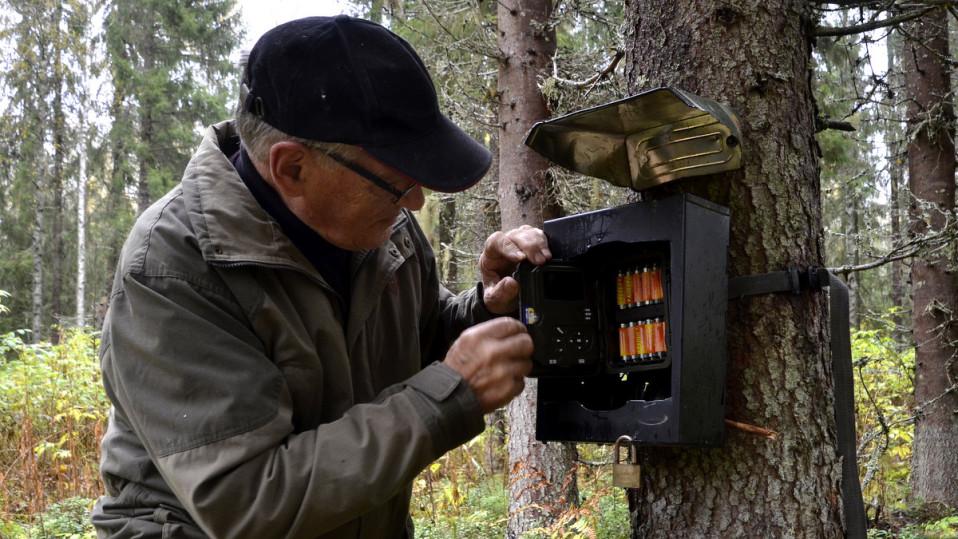 Itärajan karhu näkee itsensä peilistä ja säikähtää perusteellisesti – Katso huikea video