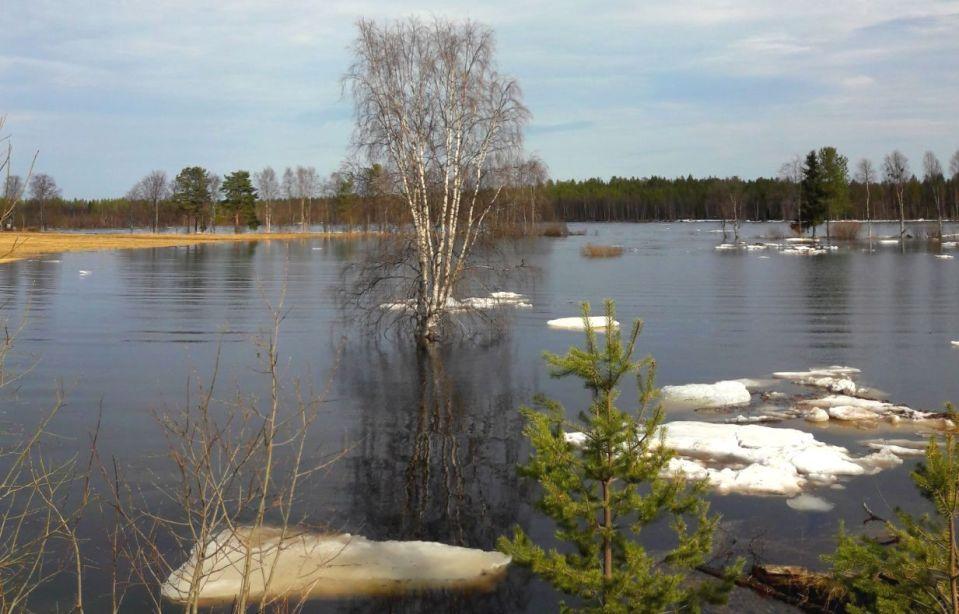 Lapin tulvatilanne on pahin Kittilässä ja Tornionjoella