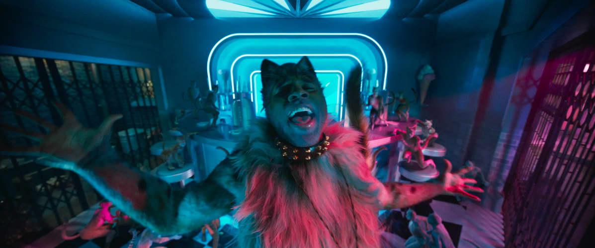 Rum Tum Tugger (Jason Derulo) on arvaamaton kissa, ja niin on koko elokuvakin.