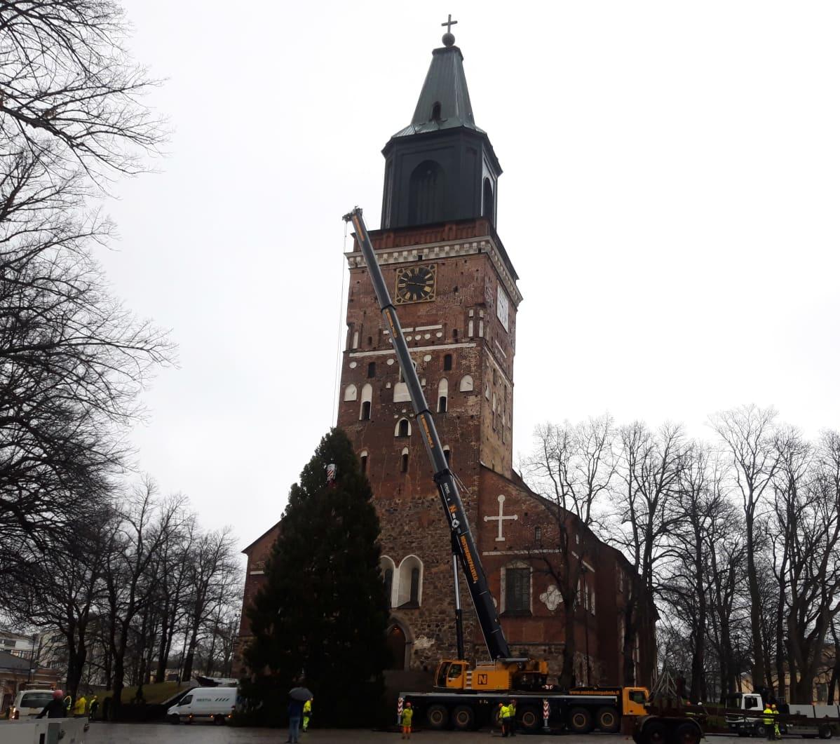 Turun tuomiokirkon joulukuusen pystytys 25.11.2020.