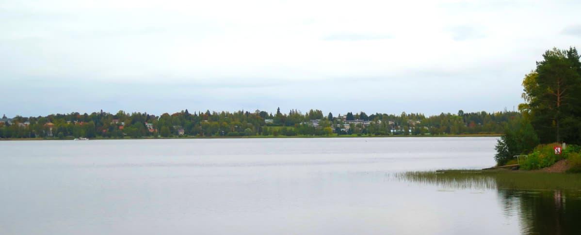 Järven takana näkyy niemi, jolla sijaitsee Ikaalisten keskustaajama.