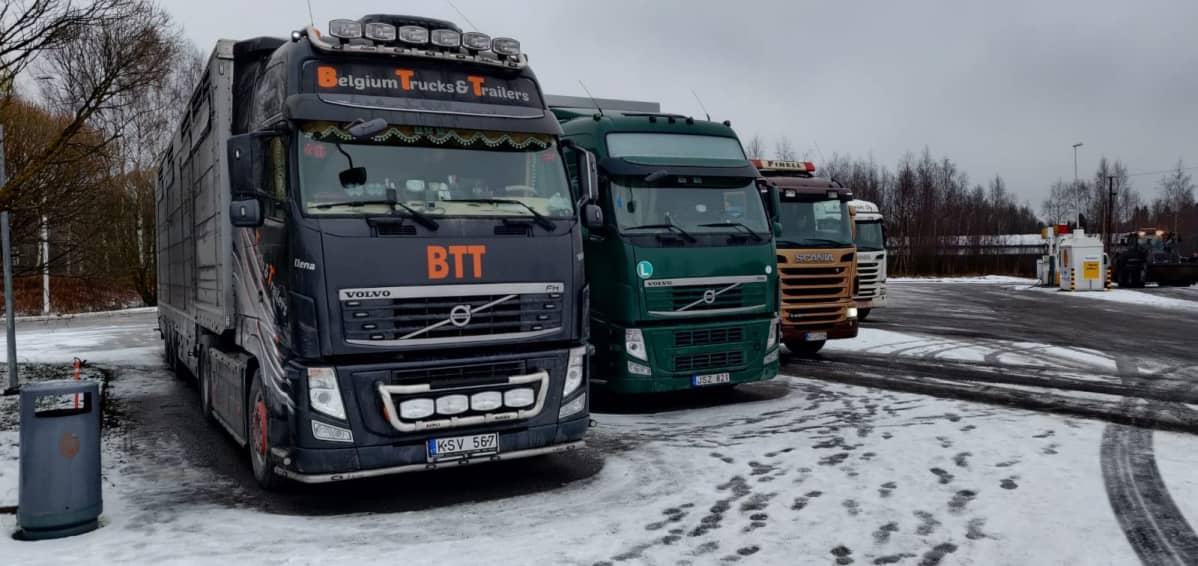 Eläinkuljetusrekat odottamassa lastausta Kokkolassa.