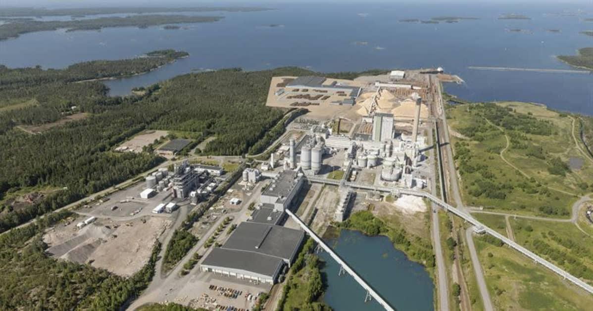 Havainnekuva Metsä Groupin (Metsä Fibre) uudesta mäntysahasta, joka aiotaan rakentaa Raumalle.