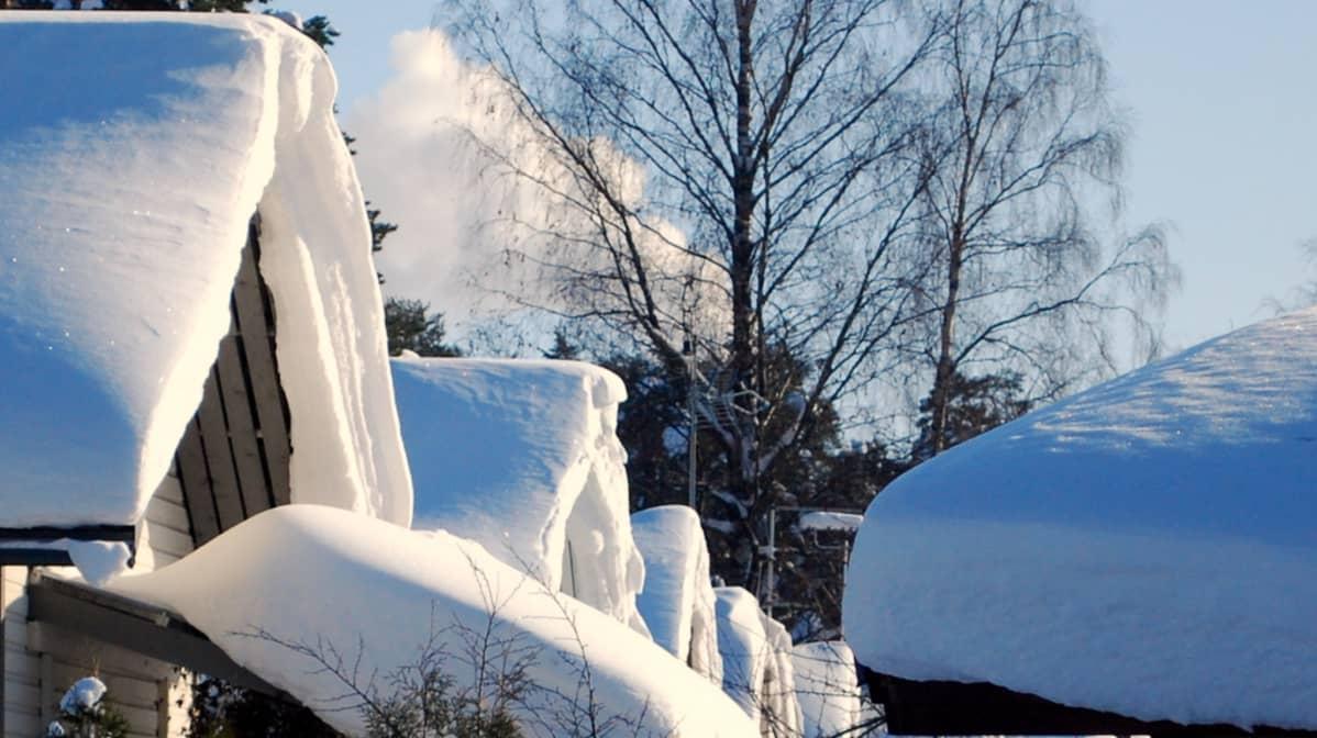 Lumisia omakotitalojen kattoja Kuopion Niiralassa.