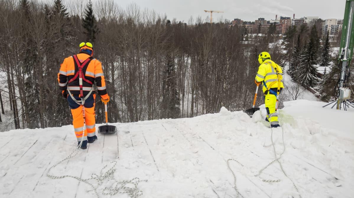 Kaksi lumenpudottajaa kolaa lunta reunan yli.