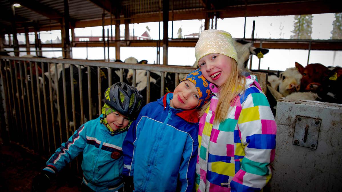 Eelis, Matias ja Elisa Anttila