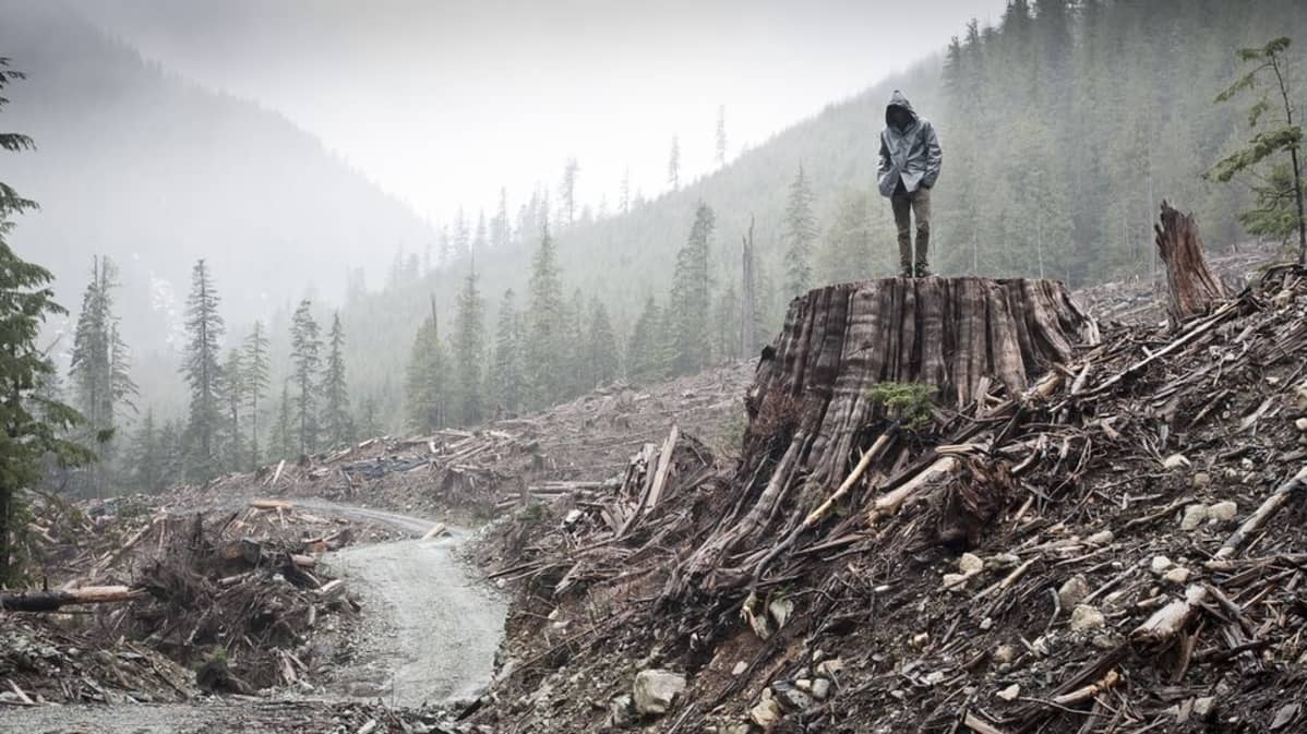 If a Tree Falls -dokumentin promootiokuva
