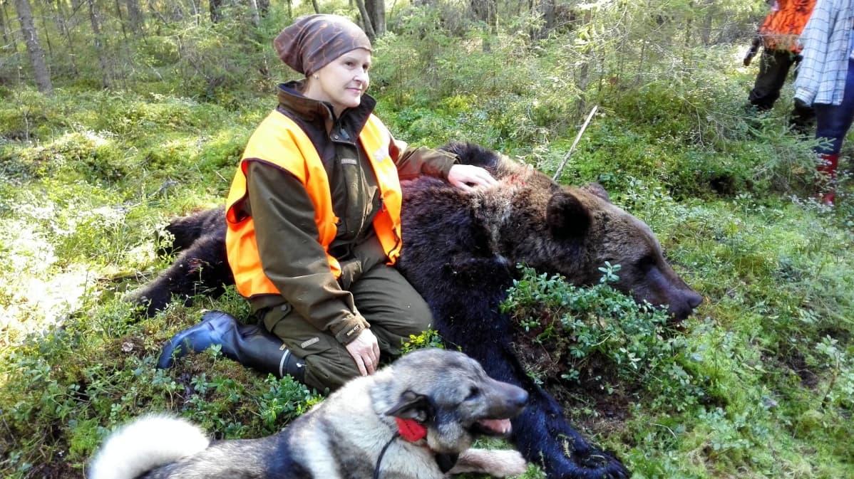 Sirpa Mikkosta onnisti karhujahdissa Savonlinnan Kiviajapalla sunnuntaina.