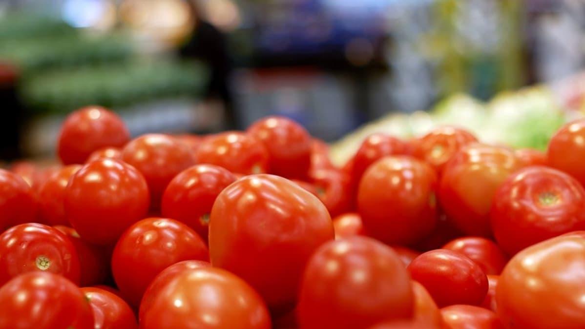tomaatteja tomaatteja tampere netistä seuraa