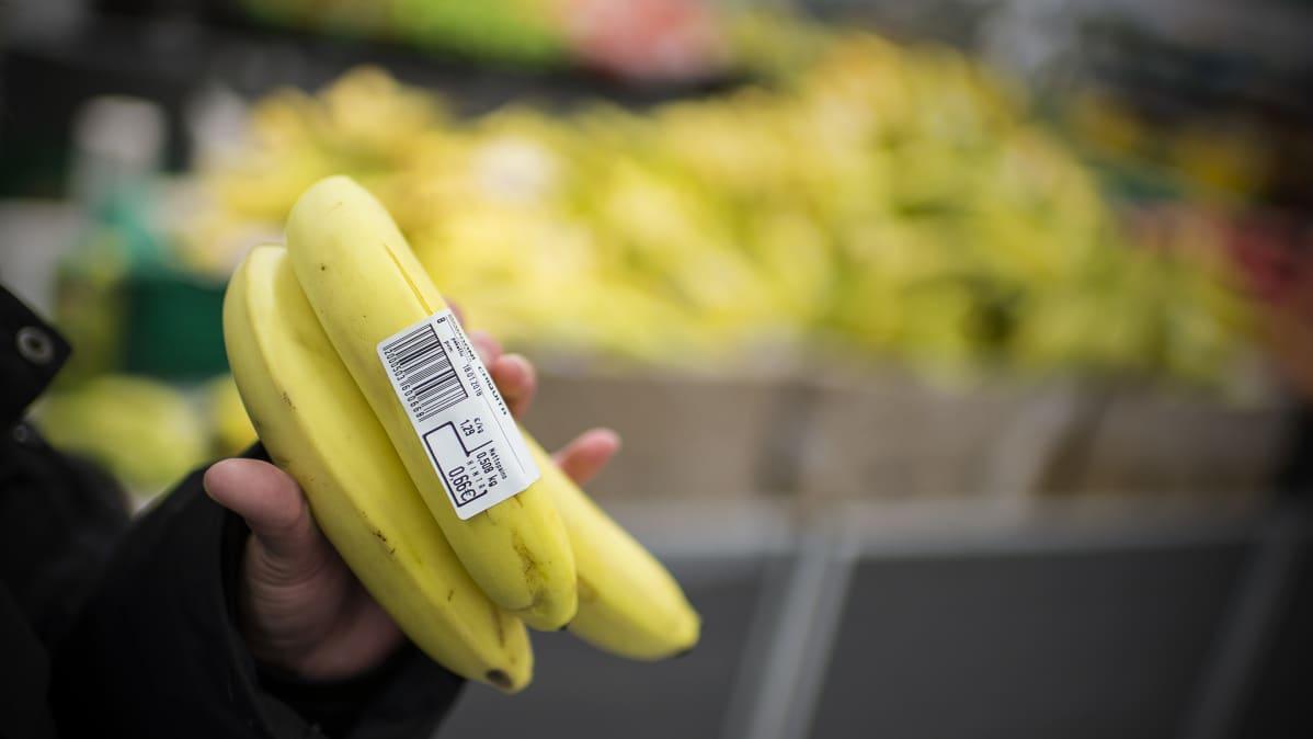 Käsi pitelee banaaniterttua kaupassa.