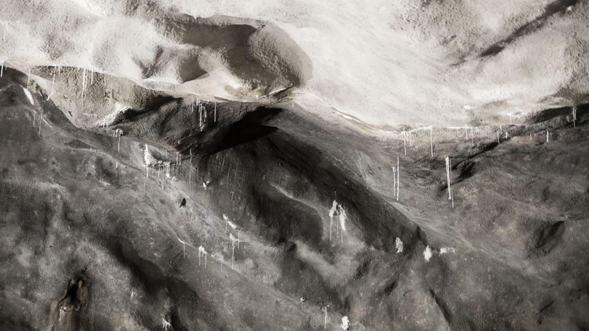 Stalaktiitteja Kruunuvuorenrannan luolan katossa