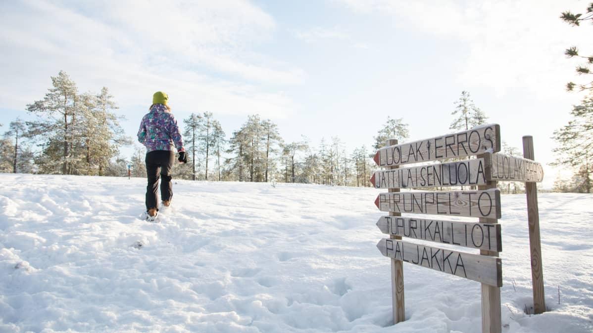 Nainen kävelee lumikengillä.