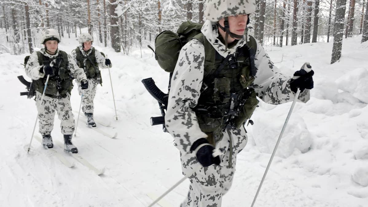 Kainuun prikaatin jääkäreitä hiihtoharjoituksessa Kuhmon Vuosangassa.