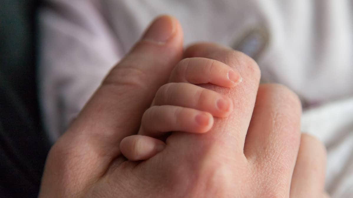Vauva pitää kiinni isän kädestä.