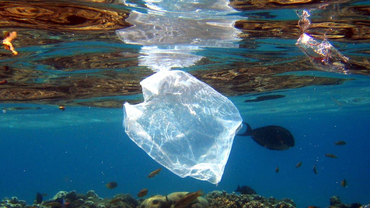 Muovipussi kelluu meressä,