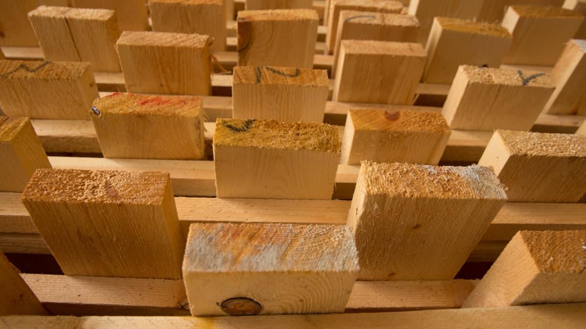 Avohakkaamatonta puutavaraa