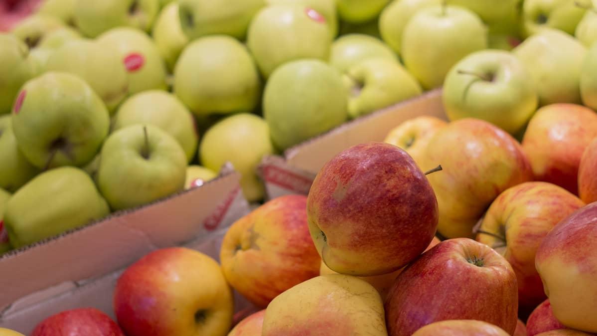 Kuvassa omenoita kaupan hedelmäosastolla