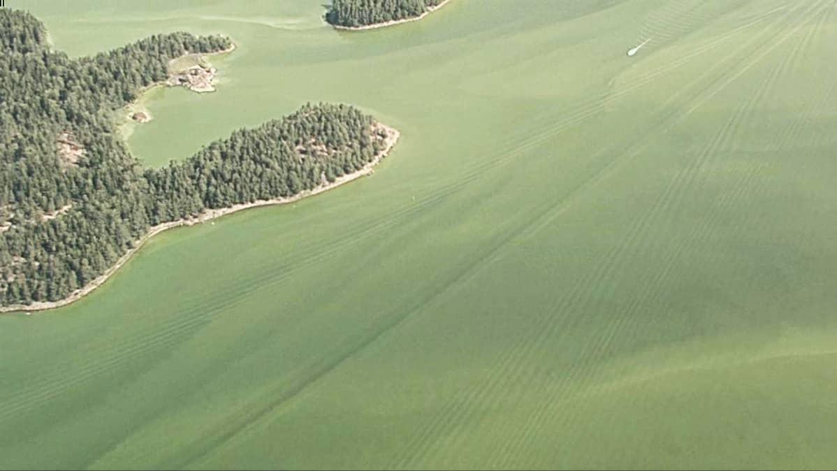 Rajavartiolaitoksen ilmakuvaa Suomelahden ja Hangon edustan levätilanteesta.