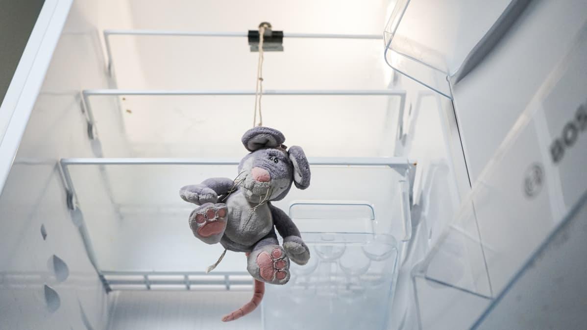 Pehmolelu jääkaapissa
