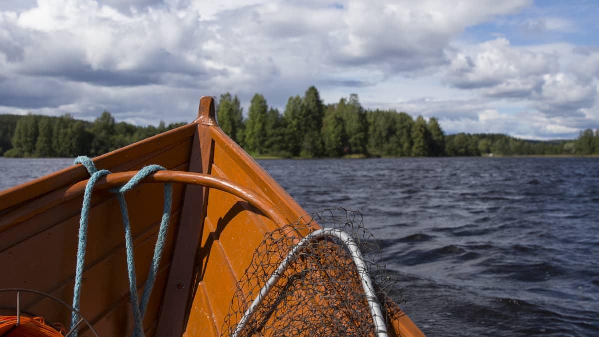 Vene kulkee järvellä, kokassa on haavi.