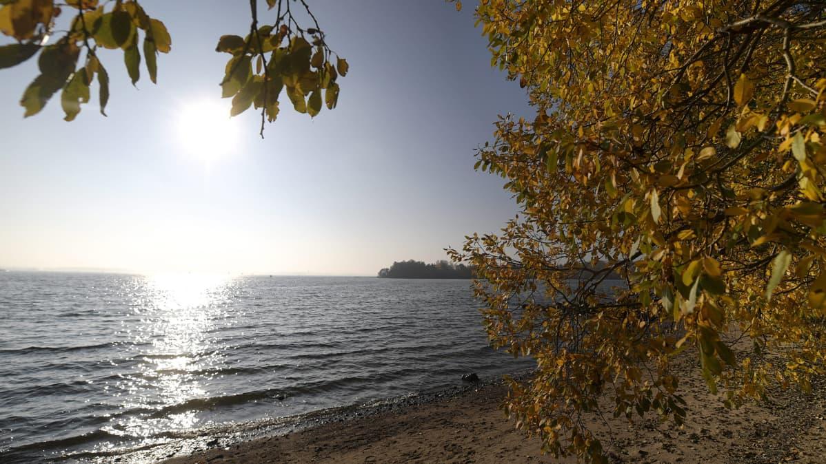 Näkymä merelle aurinkoisena syyspäivänä Mustikkamaalla Helsingissä 14. lokakuuta.