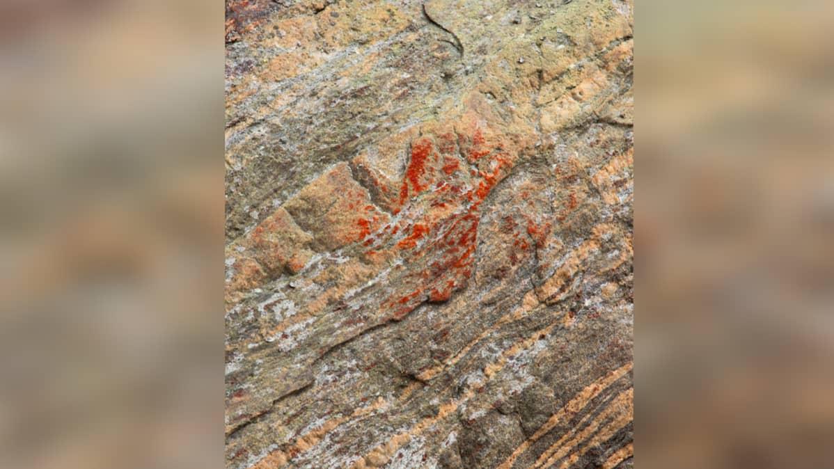 Kalliomaalaus.