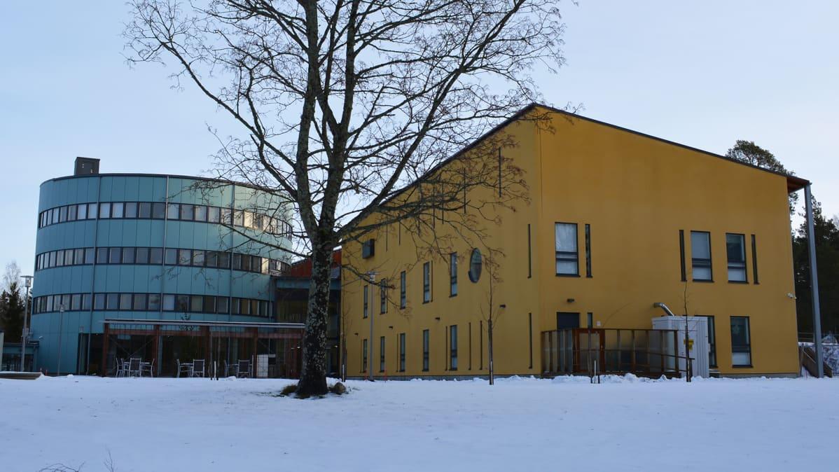Kehitysvamma-alan tuki- ja osaamiskeskus KTO Paimiossa.