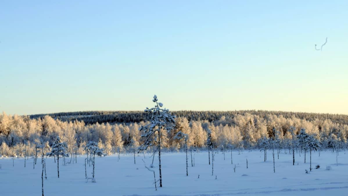 Vaarat, joiden laelle on suunniteltu Raanujärven tuulivoimapuiston tuulimyllyjä.
