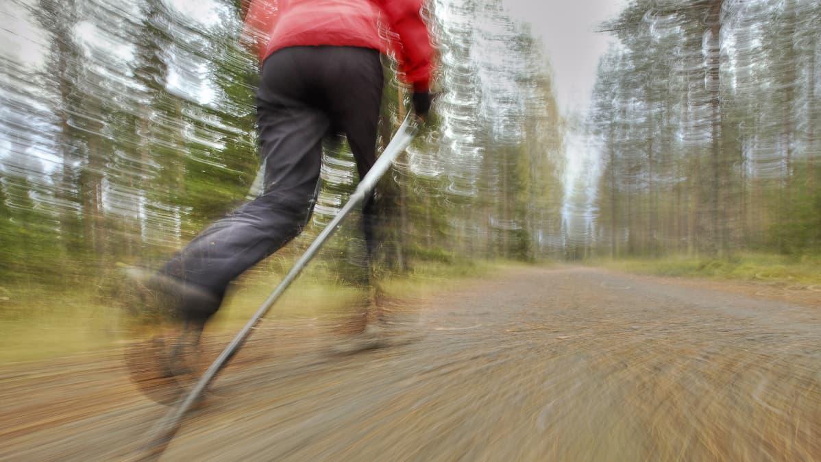 Nainen sauvakävelemässä syksyisellä metsätiellä.