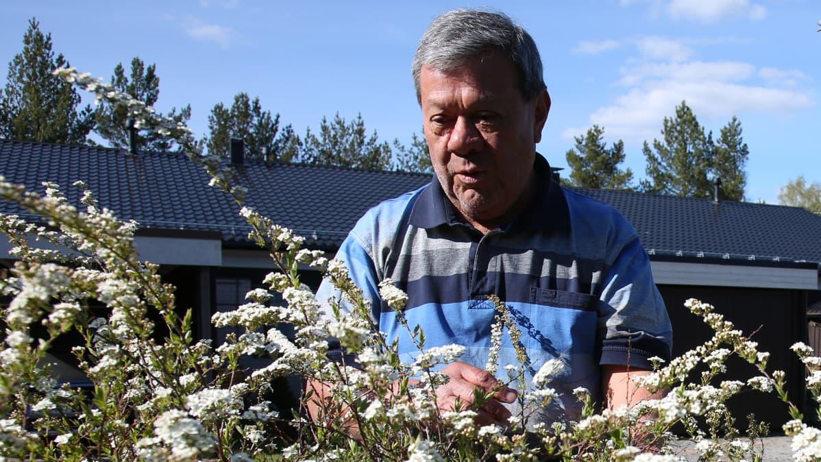 Rauhallinen elämä löytyi viimein Suomesta.
