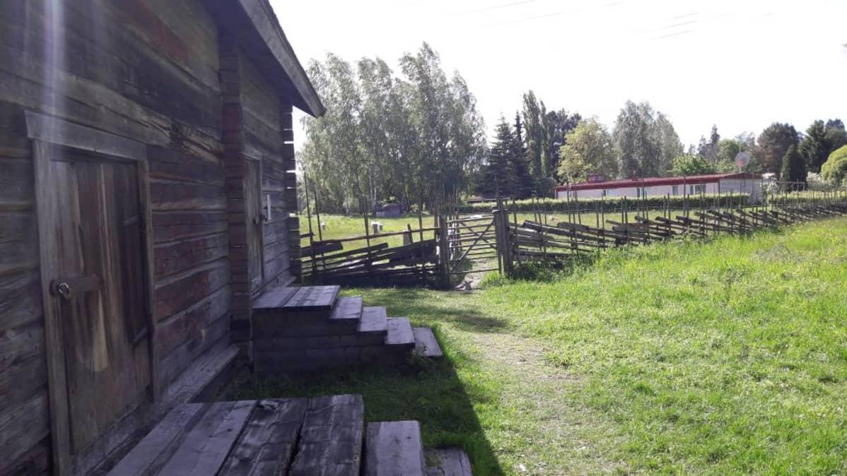 Luistarin alue Eurassa.