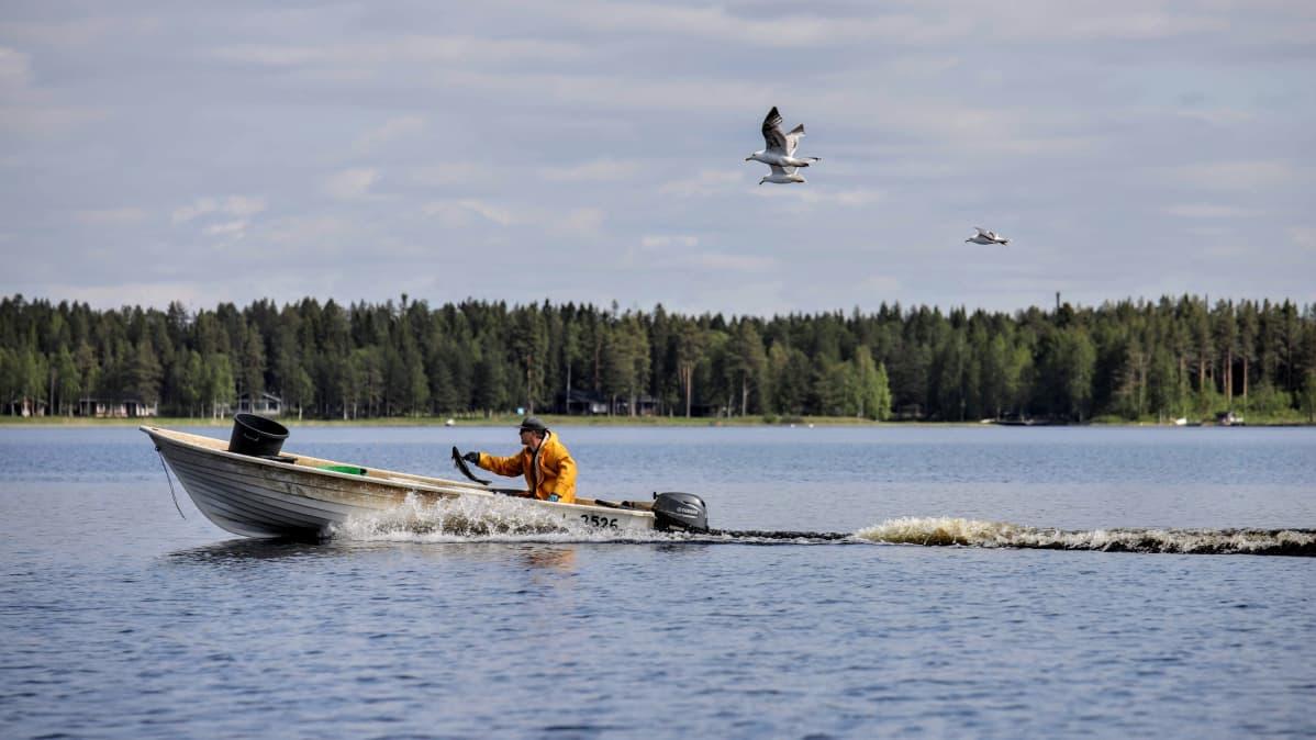 Antti Kyllönen järvellä.
