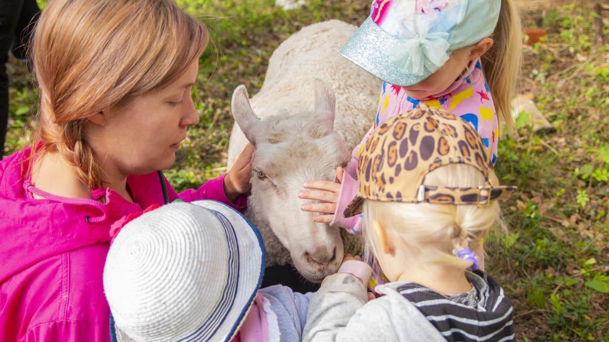 Anni Matero lapsineen silittää lammasta