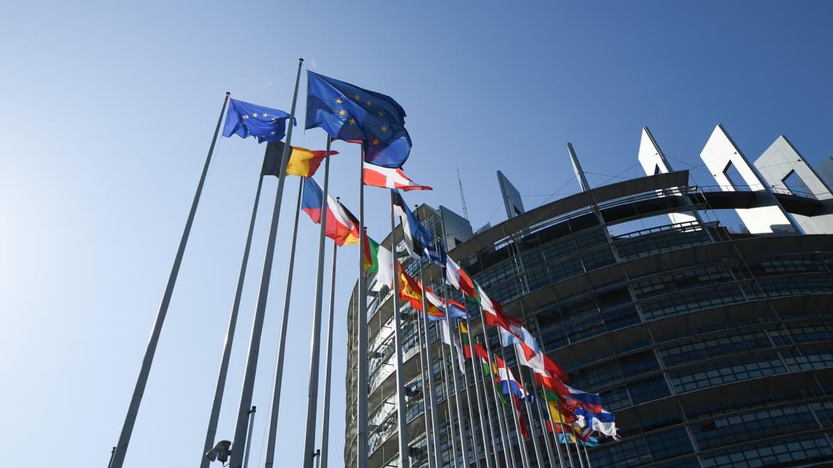 EU:n jäsenvaltioiden liput liehuivat parlamentin edustalla Strasburgissa Ranskassa 2. heinäkuuta.