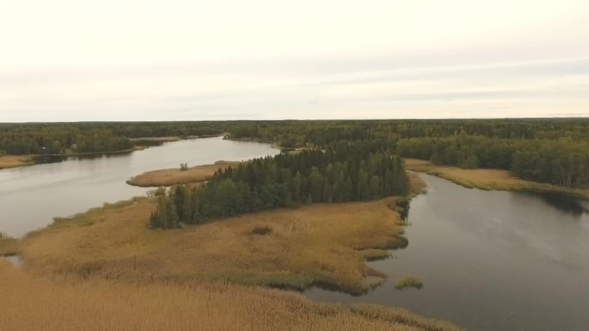 Hässjeholmenin saarta ympäröi vesijättömaa.