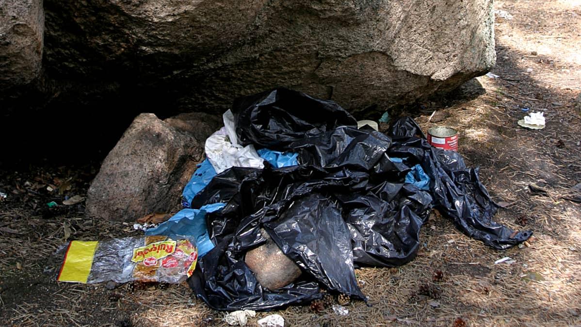 Muoviroskia kiven juuressa Repoveden kansallispuistossa.